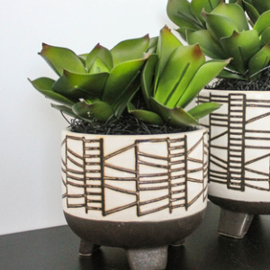 arrangement sanseveria tribal footed planter